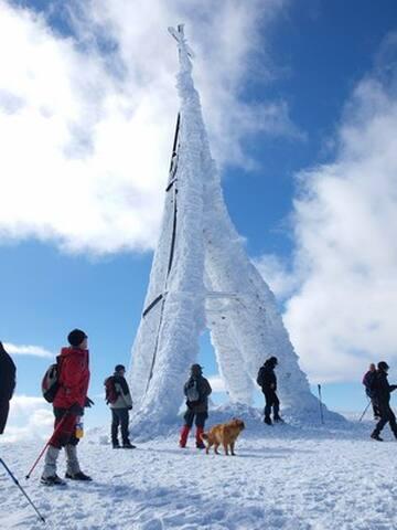 en 2h 30' puedes subir a la cima del Gorbeia con 1450m del altura