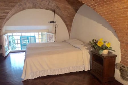 Large and nice loft in the old town - Lucca