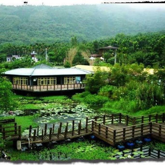 生態池上面的餐廳