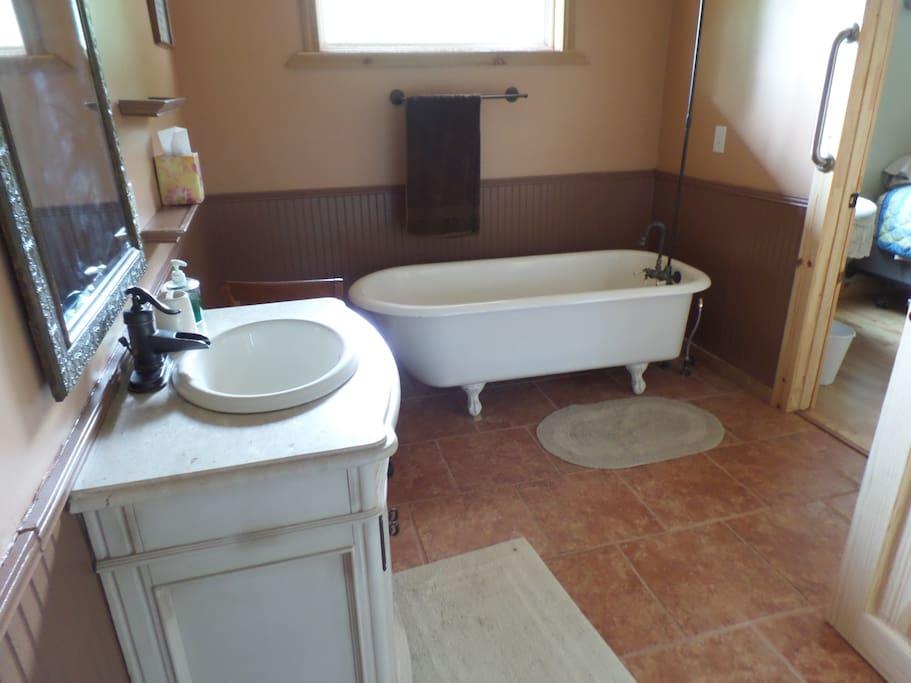 Claw Foot bathtub and shower