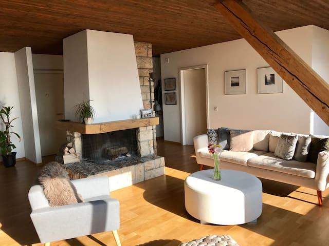 Beautiful and cozy apartment + stunning lake view! - Zollikon - Apartamento