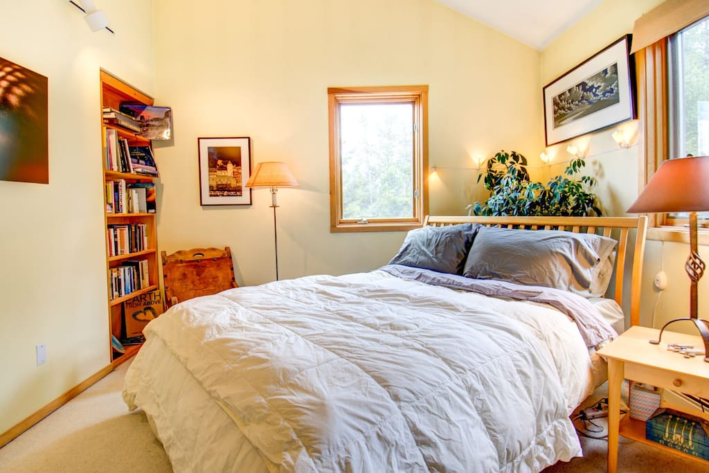 This is your guest suite.  A bookshelf full of interesting and cool books, Queen size bed, beautiful linens, artwork and a lovely view of the forest.