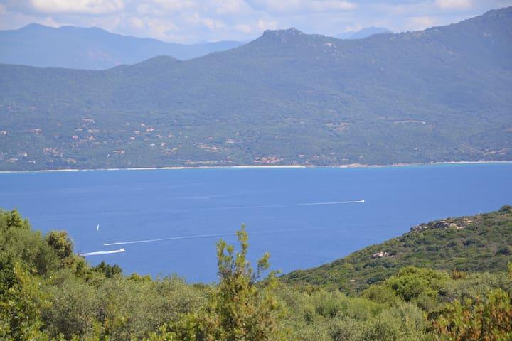 Chambre d'Hôte Corse du Sud splendide vue mer! - Belvédère-Campomoro - Aamiaismajoitus