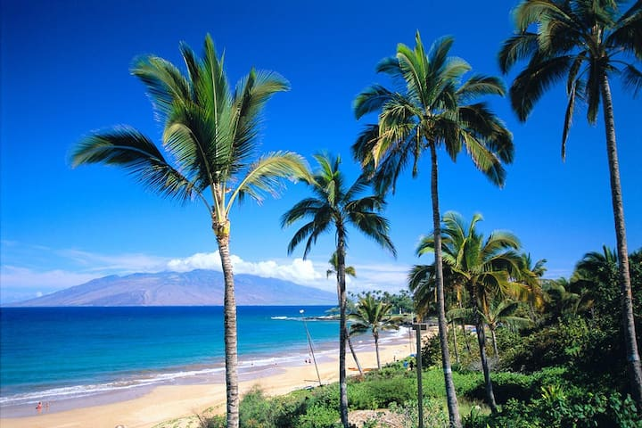 Luxury at it's Finest, Truly a Home away from Home - Wailea-Makena - Villa