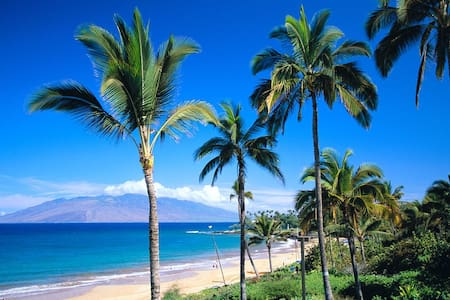 Luxury at it's Finest, Truly a Home away from Home - Wailea-Makena