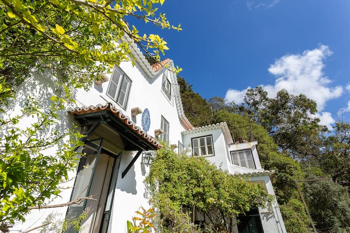 ROMANTIC OLD CHALET IN SINTRA