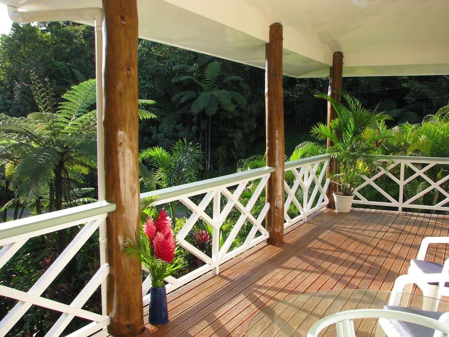 Enjoy breakfast on the veranda entertained by dozens of tropical birds.