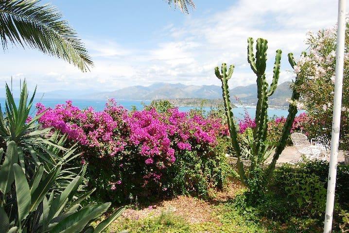 Villa panoramica con giardino - San Nicola Arcella