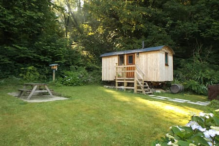 Morris the shepherds hut with hot tub , west Wales