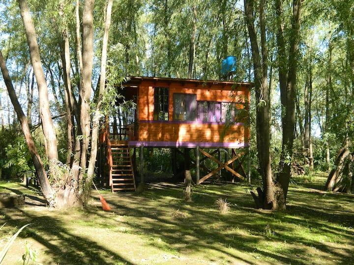 La Violeta - Cabaña en el Delta de Tigre