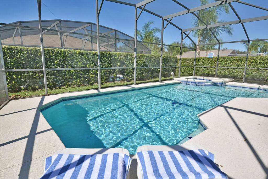 Pool showing sun loungers and privacy hedges