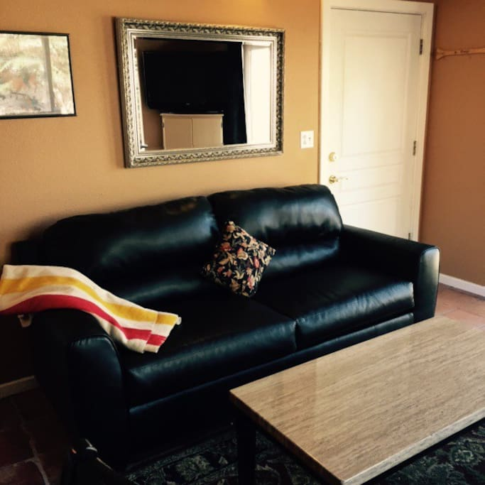New leather couch with pull-out Queen bed!