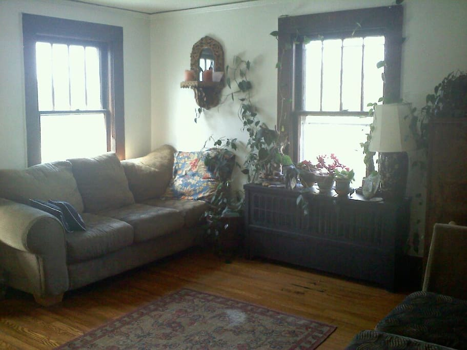 Sunny Spacious 2 Bedroom 1 Mi Town Apartments For Rent In Asheville North Carolina United States