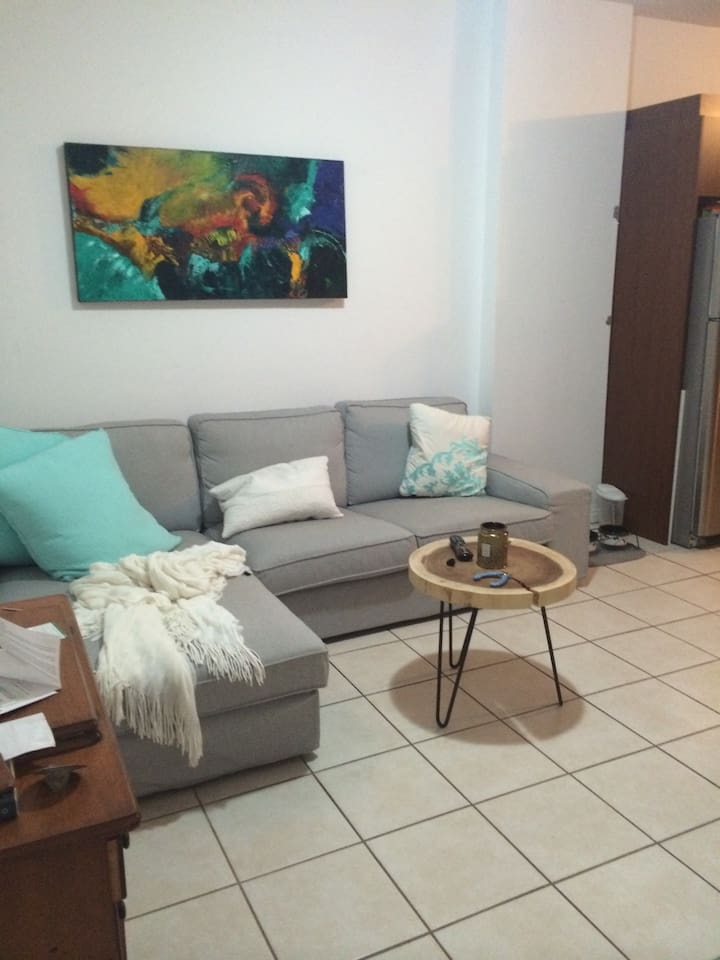 Joli chambre louer sur le plateau apartments for rent for Chambre a louer a montreal