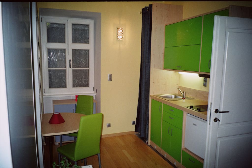 Brand new kitchen with stove and fridge