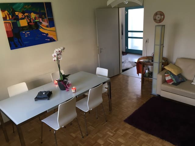 FLAT IN ZURICH FREE JUST IN THE EASTER WEEK! - Zollikon - อพาร์ทเมนท์
