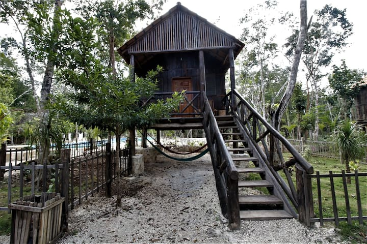 Private cabin at the boundaries of magestic forest