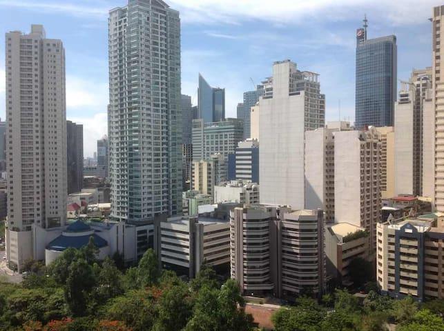 Greenbelt GreatView-A Nr Mall Makati Financial CBD