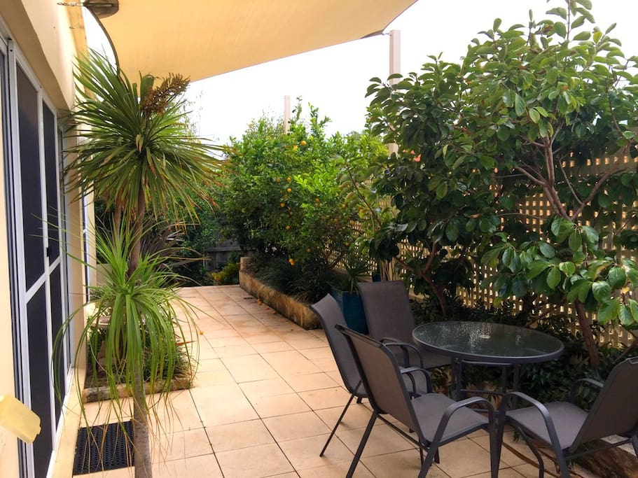 Leafy outdoor area with citrus trees and outdoor seating. Opens off kitchen/sitting area.
