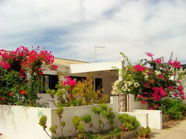 4 Bed Algarve Beach Villa sleeps 8 - Moncarapacho