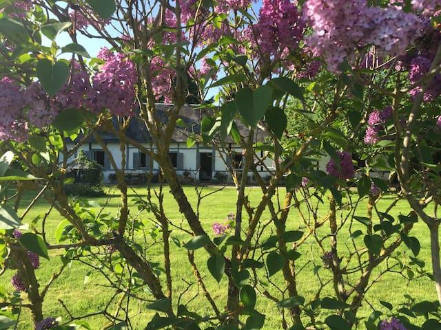 Maison de charme en Normandie - Ronchois - Casa