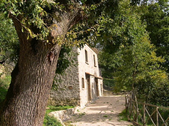 """Il Serrone"" country house"
