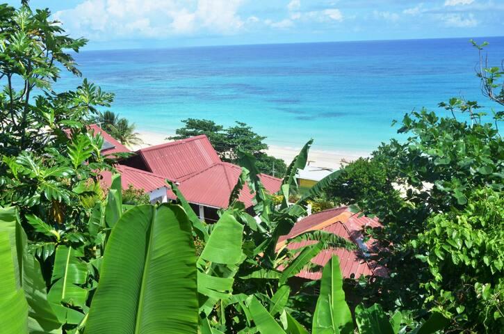 Ocean Winds Villas - Upper bedroom - Long Bay - House