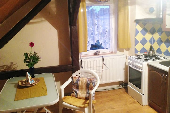 Fully equipped kitchen with gas stove.