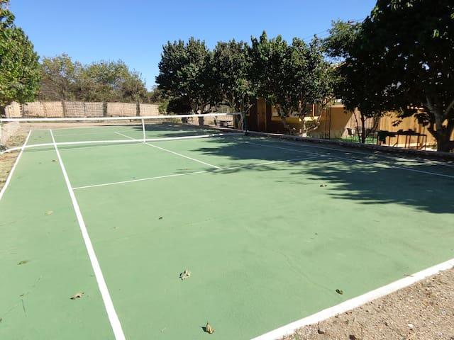 Cancha tamaño reglamentario con raquetas y pelotas. La red se puede sacar para contar con una multicancha.