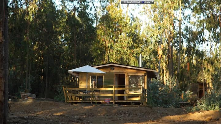Cabaña, bosque, chimenea, tinaja a leña y piscina