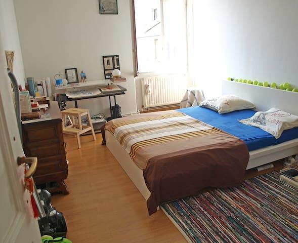 chambre spacieuse proche toutes commodit s appartements louer annemasse auvergne rh ne. Black Bedroom Furniture Sets. Home Design Ideas