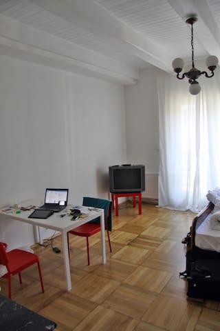 cool '30s studio, perfect location - Pilsen - Apartment