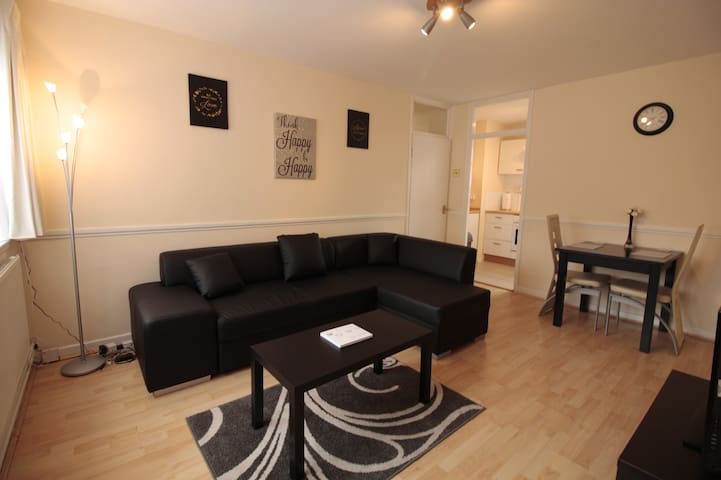 Zone 1 - bright and clean one bedroom flat - Londres - Pis