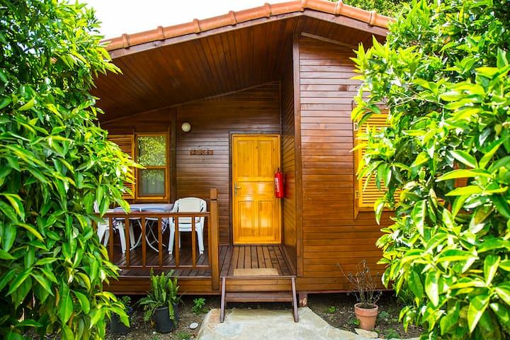 """Bungalow """"Relax"""" in Orange Garden"""