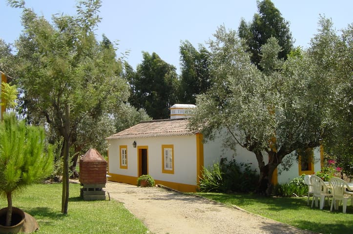 Rustic house in a portuguese farm