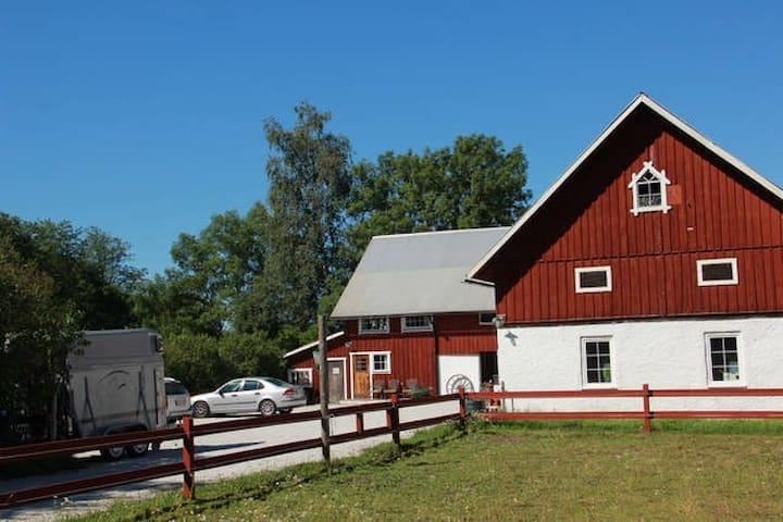 Liten kalkstensidyll på hästgård - Gotland