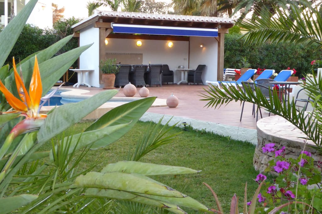 Garden, pool and outdoor kitchen area.