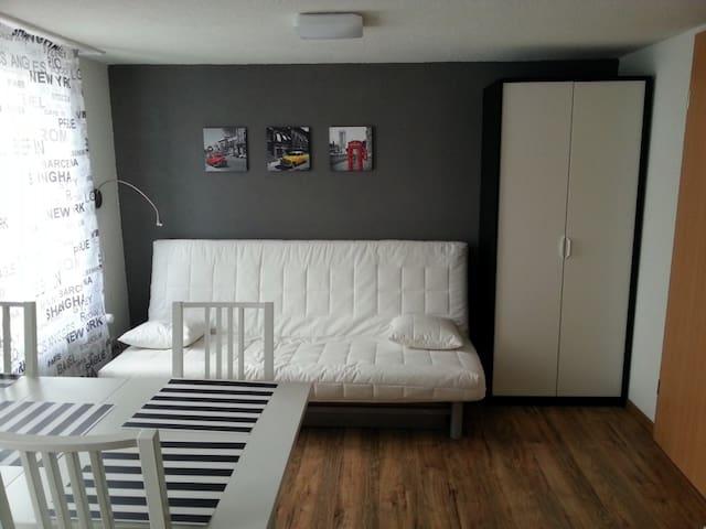 Studio: Bequemes Schlafsofa und Kleiderschrank