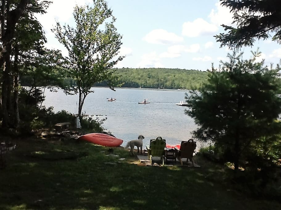 Lawn, private beach area, swimming, area and float - canoe and paddle boat
