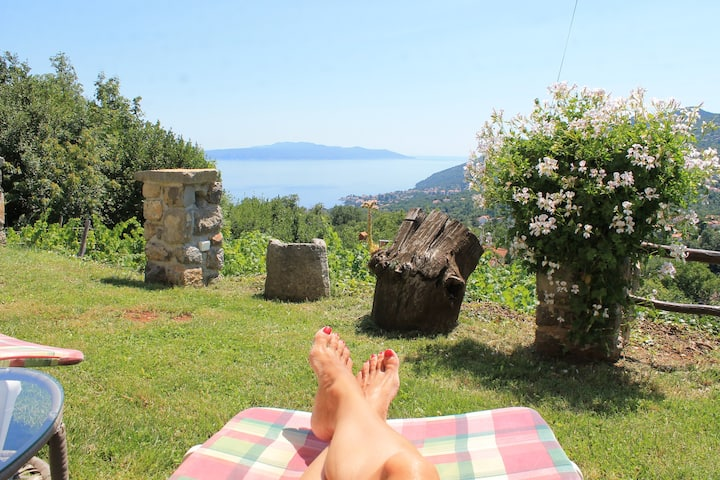 Sea View Apartment with Garden near Opatija
