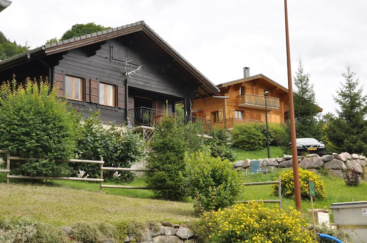 Chalet in Montriond/Morzine - Montriond - House