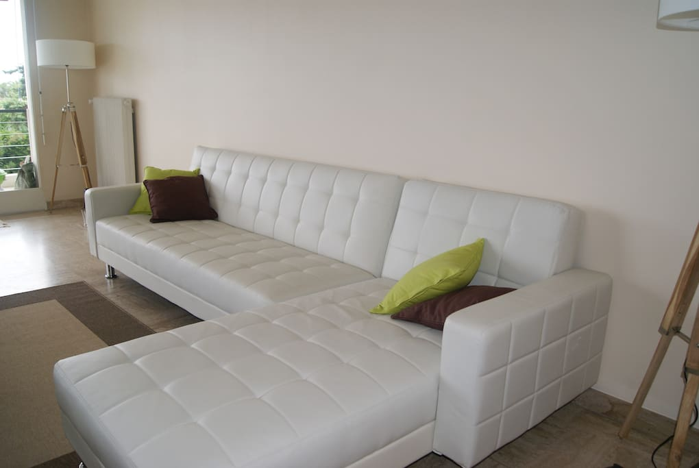 Huge living room with sofabed.