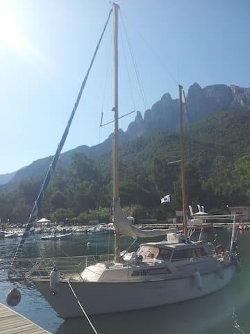 Un bateau roots et chaleureux - Marseille - Boot