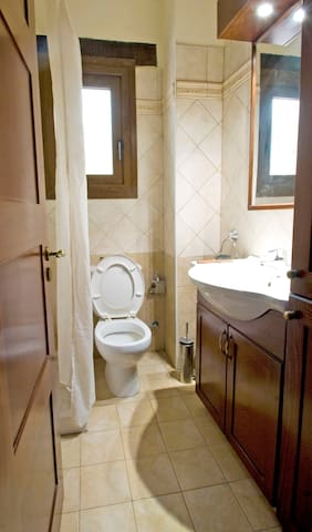 toilet and shower place for master bedroom