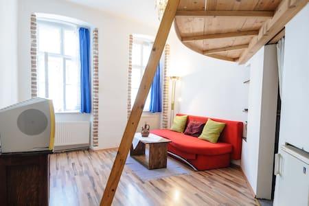 Cozy Artist Apartment  - Вена
