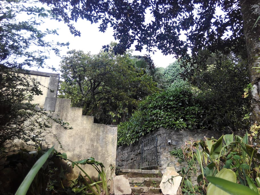 Little corners in the garden