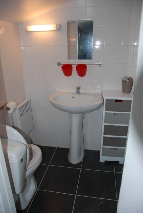 salle de bain avec douche + lavabo+WC