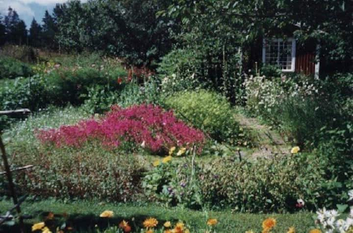 Das Haus i Rislycke-mysig stuga i trevlig trädgård
