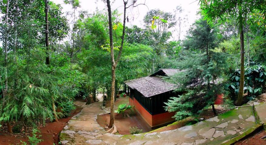 Eco friendly Cottages Near  Waterfall - Meppadi - 其它