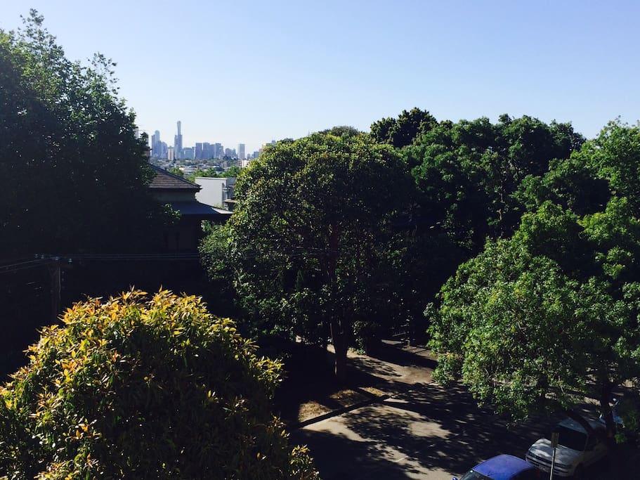 Tree lined balcony